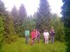 Поляна из туй и это всё растет в Ярославской области