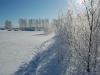 Чистота зимы